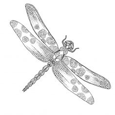 This free Dragonfly adult coloring page promotes relaxation and calmness due to…