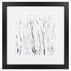 Birches Framed Print I at Joss and Main