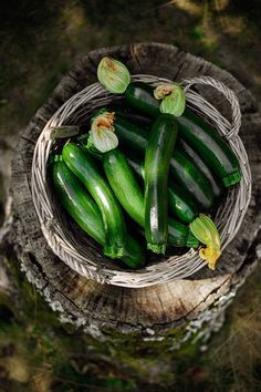 Zucchini or couchettes with flowers. Lovely for stiffening with ricotta & pan frying in a light tempura batter. Fruits And Veggies, Fruits And Vegetables, Vegetables Photography, Fruit And Veg, Farm Life, Raw Food Recipes, Food Pictures, Food Styling, Food Art