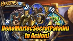 RenoMurlocSecretPaladin in action.Hearthstone:heroes of warcraft