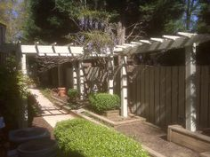 arbor wisteria   Recent Photos The Commons Getty Collection Galleries World Map App ... Wisteria Trellis, World Map App, Arbors, Galleries, Sidewalk, Gardening, Photos, Collection, Pictures