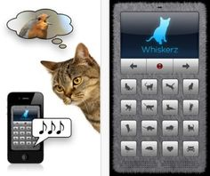 Human-to-Cat Translator lets you talk to felines