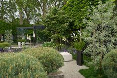 Ulf Nordfjell, The Telegraph show garden- Chelsea Flower Show 2009 Modern Landscaping, Outdoor Landscaping, Outdoor Decor, Landscape Architecture, Landscape Design, Garden Design, Chelsea London, Small Gardens, Outdoor Gardens