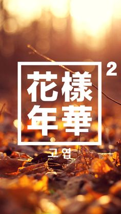 BTS    화양연화 pt.2    고엽    wallpaper for phone