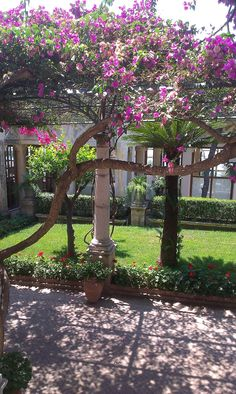 Beautiful garden in Taormina, Italy