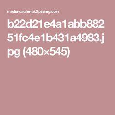 b22d21e4a1abb88251fc4e1b431a4983.jpg (480×545)