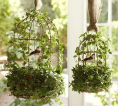 Find some different sized bird cages in a pet or craft store, add artificial vines and moss, cute mushroom birds and hang them with a swatch of burlap! I so heart this!!