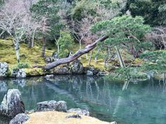 Kyoto, River, Outdoor, Outdoors, Rivers, The Great Outdoors