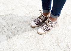 Bronx leopard