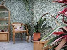 Bildergebnis für Tapete Palmen Plants, Wallpapers, Bedroom, Pictures, Plant, Planets
