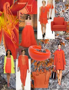 """A spirited reddish-orange called """"Tangerine Tango"""" has been pronounced """"Color of the Year"""" for 2012 by the Pantone Color Institute."""