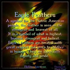 Respect the Eagle. The connection to the Creator. Respect its feathers. American Indian Quotes, Native American Pictures, Native American Artwork, Native American Quotes, Native American Women, Native American History, Native American Indians, Native Indian, Hopi Indians