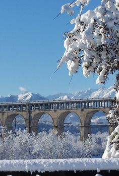 Soler Viaduct, Cuneo, Italy