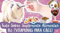 Quais Vitaminas O Cachorro Precisa + Vantagens e Desvantagens De Dar Sup...