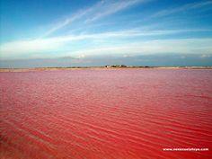 Salina Las Cumaraguas, Paraguaná, Falcón State, Venezuela - Salt deposits