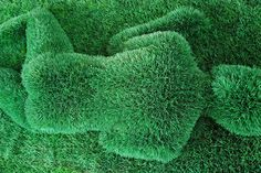 Google Image Result for http://artsdesignblog.com/wp-content/uploads/2009/10/amazing-2dgrass-2dsculptures-2d7.jpg