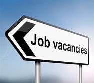 Human Welfare Evolutionary Organization Gram Panchayat Level Job Coordinator Job Social Problem
