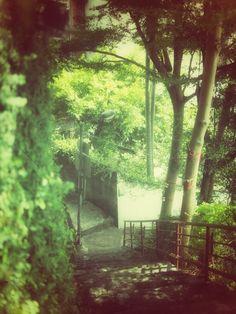 淡水紅楼(Red Castle)近くの階段にて。▶続く http://guide.travel.co.jp/article/5191/