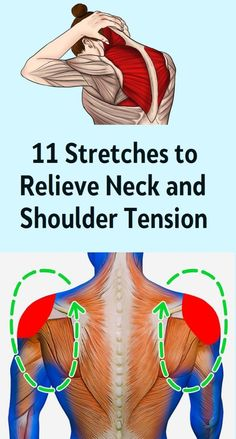 11 Stretches to Relieve Neck and Shoulder Tension A stiff neck and tight shoulders are very well known issues for many of us. Neck And Shoulder Stretches, Neck And Shoulder Pain, Stiff Neck Stretches, Shoulder Joint, Shoulder Rehab Exercises, Stiff Shoulder, Muscle Pain Relief, Neck Pain Relief, Massage Therapy