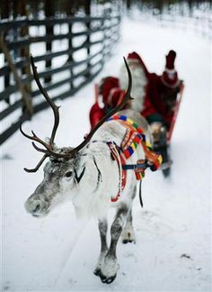 """""""in Finland, in the intimacy of Santa Claus"""""""
