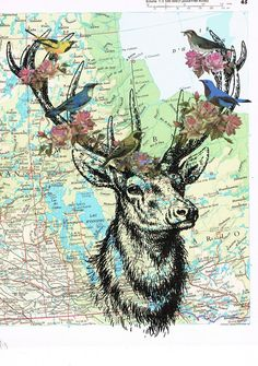 DEER,birds.Colourful.Collage.Map Page Print,home/deco.affordable,art,freebie.mom.dad.animal lover.birthday.travel.globe.child.flower