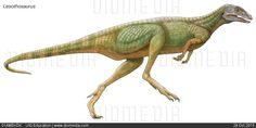 Lesothosaurus,