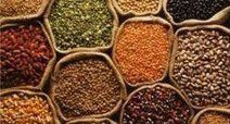 Transgenic Seeds are Gaining Better Response and Has a Significant Impact on Agricultural Production | Ecoagriculture landscapes - Adapting, designing and managing biodiversity & ecosystem services for sustainability | Scoop.it