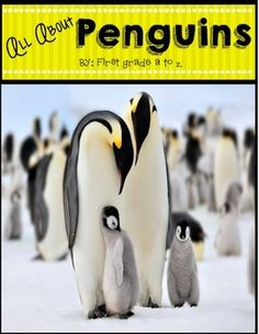 All About Penguins Research Unit.