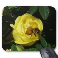 Honey Bee Inside Yellow Rose Bud Mouse Pad