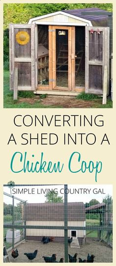 Building a Chicken Coop - DIY. How to turn a shed into a chicken coop. Use what you have on hand to save money when homesteading. A step by step guide. via Simple Living Country Gal | Simple living from the ground up Building a chicken coop does not have to be tricky nor does it have to set you back a ton of scratch.