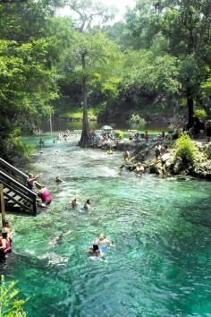 Lafayette Blue Springs State Park. Natural spring / swimming hole and great family day out in Florida.