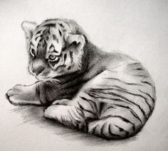 pencil painting pic - Google Search