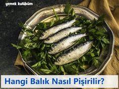 Hangi balık nasıl pişirilir nasıl yapılır, fırında ızgarada mangalda hangi balık güzel olur, ızgarada fırında pişen balıklar, buğulama yapılan balıklar hangileridir