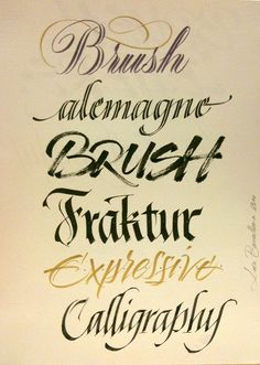 Examples by Luca Barcellona - Calligraphy & Lettering Arts, via Flickr