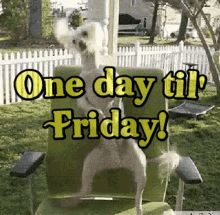 """55 """"Almost Friday"""" Memes - """"One day til' Friday!"""" Friday Jokes, Friday Gif, Its Friday Quotes, Happy Thursday, Happy Friday, Tomorrow Is Friday, Weekend Is Coming, Almost Friday, One More Day"""