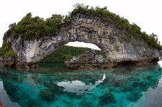 palau, micronesia. That water color is Amazing!! The reflection makes it look like a complete circle.