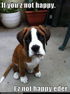 Empathetic Puppy Feels Your Feelings...