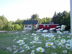Belfast Cottage Rental: Classic American Getaway With Fireplace, Trout Pond & Family Fun! | HomeAway