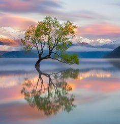Lake Wanaka, New Zealand. Photo by Karen Plimmer