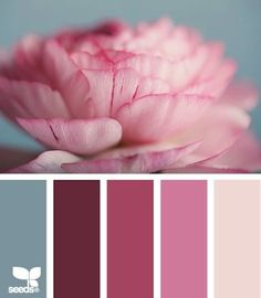 Petaled tints