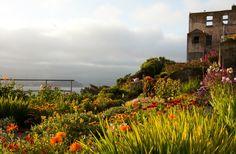 7 projetos de revitalização urbana   Pamela Hartford   http://www.bimbon.com.br/projeto/7_projetos_de_revitalizacao_urbana  #garden #alcatraz