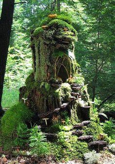 20 Beautiful Tree Stump Planter Ideas for the Garden Fairy Tree Houses, Cool Tree Houses, Fairy Garden Houses, Gnome Tree Stump House, Fairies Garden, Tree Stump Planter, Tree Stumps, Fairy Garden Accessories, Beautiful Fairies