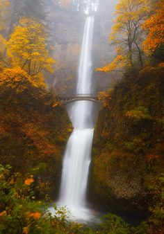 Multnomah Morning - Oregon - USA - by Darren With