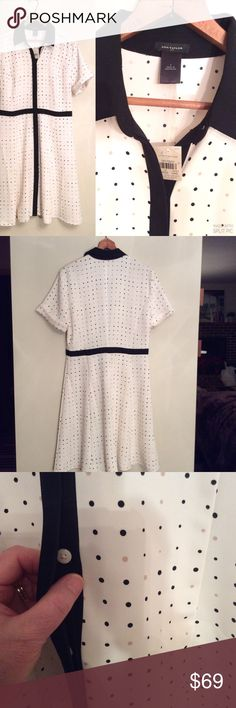 """ANN TAYLOR🔹FIT & FLARE SHIRT DRESS🔹CAREER🔹NWT Lovely ANN TAYLOR dress is made of lightweight flowing polyester, and styled with covered button up front. Beige and black polka dots on a cream background. New with tags but no price on tag. Size 4. Measures 19"""" armpit to armpit, and length is 38"""" from shoulder. Perfect, perfect, perfect career dress! SUGGESTED USER, FAST SHIPPER Ann Taylor Dresses"""