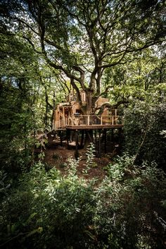 The Woodman's Treehouse // This magical structure is part of a larger eco-glamping site in Dorset, UK and was designed in a collaboration between Guy Mallinson, founder of Mallinson Ltd, and Keith Brownlie, co-founder of the BEaM studio, a leading international name in bridge architecture.