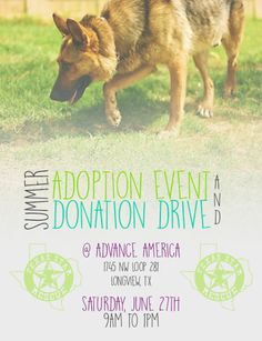 PLEASE SHARE!!!  ADOPTION AND DONATION EVENT SATURDAY, JUNE 27 9AM-1PM ADVANCE AMERICA LONGVIEW,TX PLEASE SHARE!!!  Come see us Saturday at Advance America from 9am-1pm and adopt your new best friend from Texas Star Rescue in Longview, Texas #TSRadopt #woof #helpsavealife #dog #rescuedismyfavoritebreed #texasstarrescue #adoptdontshop #puppies #chichi #pitbull #lab #terrier #GSD #germanshepherd #lab #beagle #shihtzu #basset #poodle #doxie #ratterrier