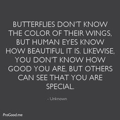 butterflies can't see their wings quote | Unknown-Butterflies-dont-know-the-color-of-their-wings.jpeg