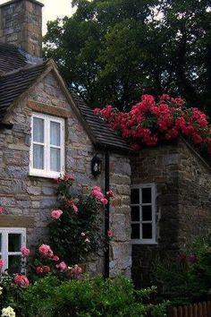 Cozy Cottage!