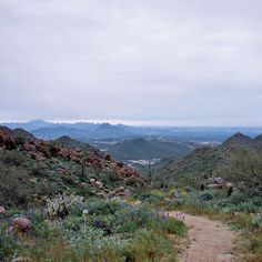 A new view, Scottsdale hike