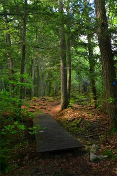 Algonquin Park Trails, Camping in Ontario, Booths Rock #algonquinpark